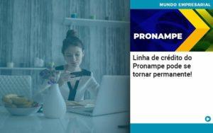Linha De Credito Do Pronampe Pode Se Tornar Permanente - Contabilidade em Nova Iguaçu - RJ | AMR Contabilidade